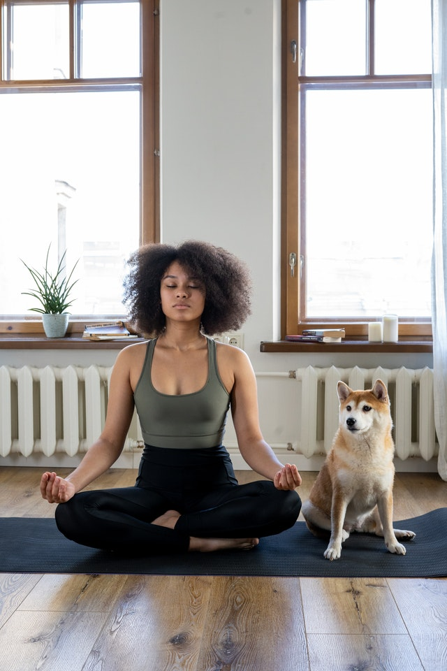 How to Do Dog Yoga with Your Pooch